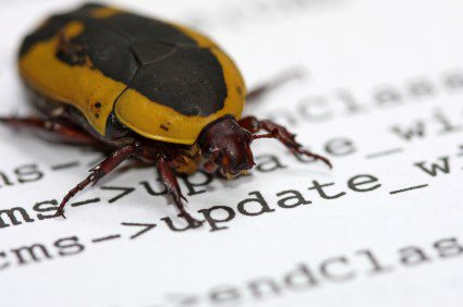 Computer bug, Lessons for Business, The Myndset digital marketing brand strategy