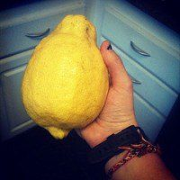 Lemon creative commons, The Myndset Digital Marketing and Brand Strategy