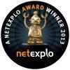 Netexplo Winner 2013, The Myndset at Netexplo 2013