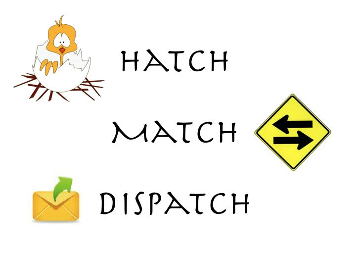 Hatch Match Dispatch - The Myndset Digital Marketing Strategy