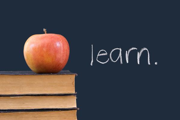 """""""learn"""" written on blackboard, the Myndset Digital Marketing"""