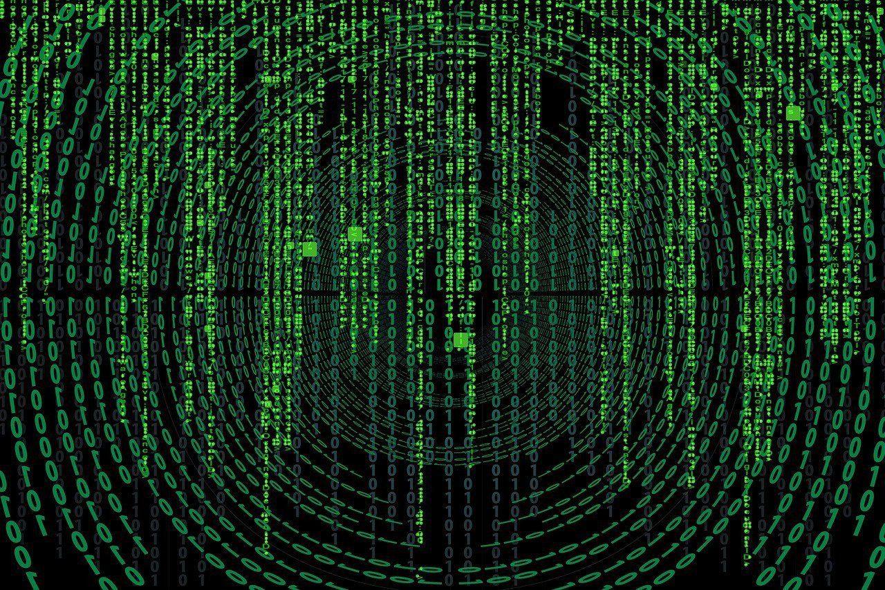 brand disruption data